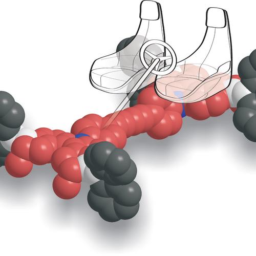 macchine molecolari